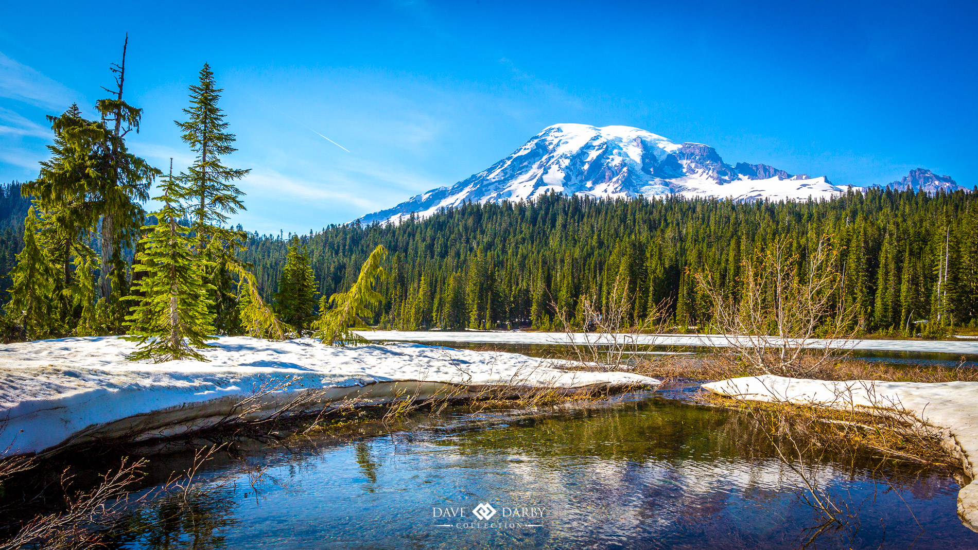Mt. Rainier National Park - One Particular Harbour by Dave ...
